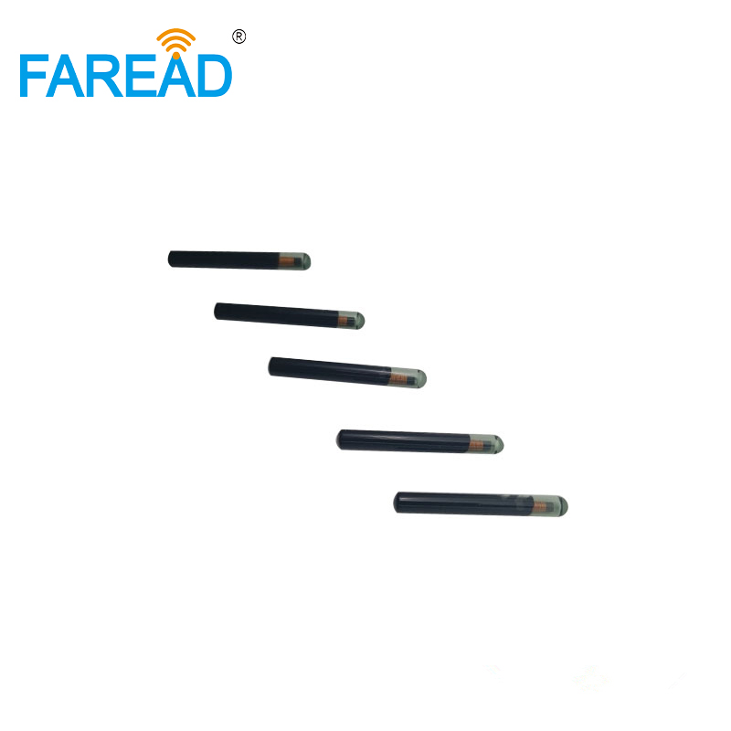 LF  Hitag S256  4*34mm RFID Transponder For Tracking ICAR Certification  ISO11784/5