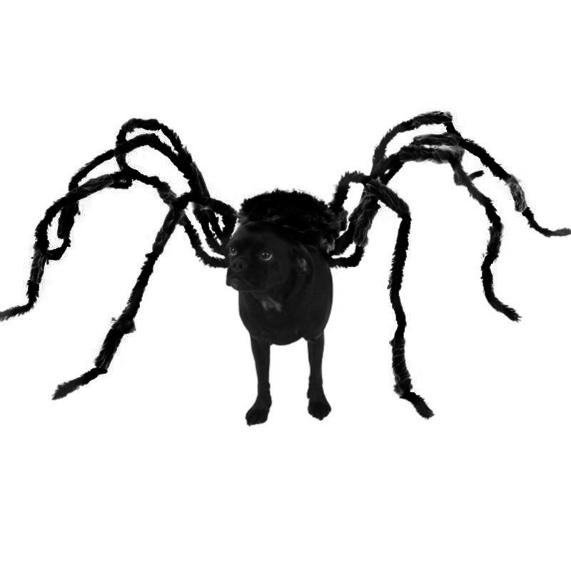 Divertido Halloween mascota disfraz perro broma gato Accesorios negro araña broma miedo Prop Horror partido villano Bug terror animales DIY