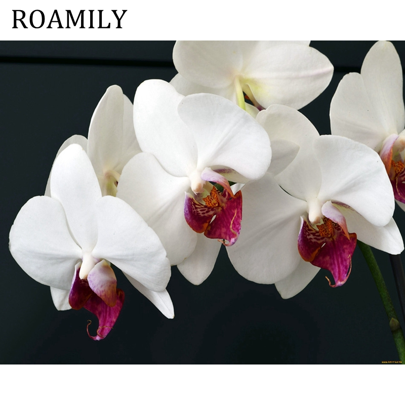 White flower oil philippines 4k pictures 4k pictures full hq china hoe hin white flower embrocation life essential oils life philippines what are essential oils outstanding white flower analgesic balm ingredients mightylinksfo
