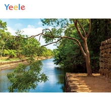 Yeele Landscape Photocall River Forest Stones Decor Photography Backdrops Personalized Photographic Backgrounds For Photo Studio