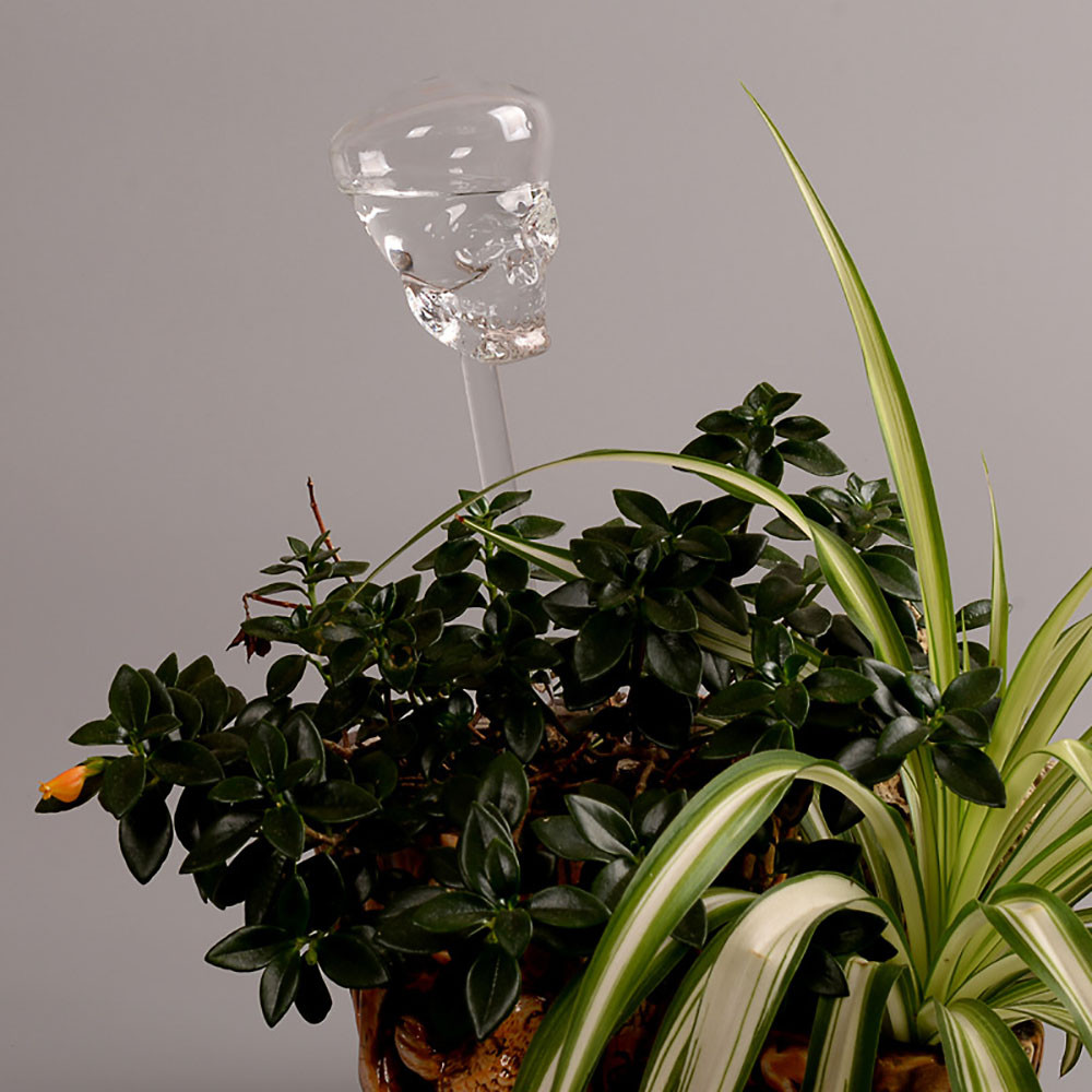 Indoor Automatic Skull Glass Garden Plant Watering Device Sprinkler Water Cans Glass Clear Bird Shape Watering Sprinklers Device 2 pcs self watering plant glass bulbs