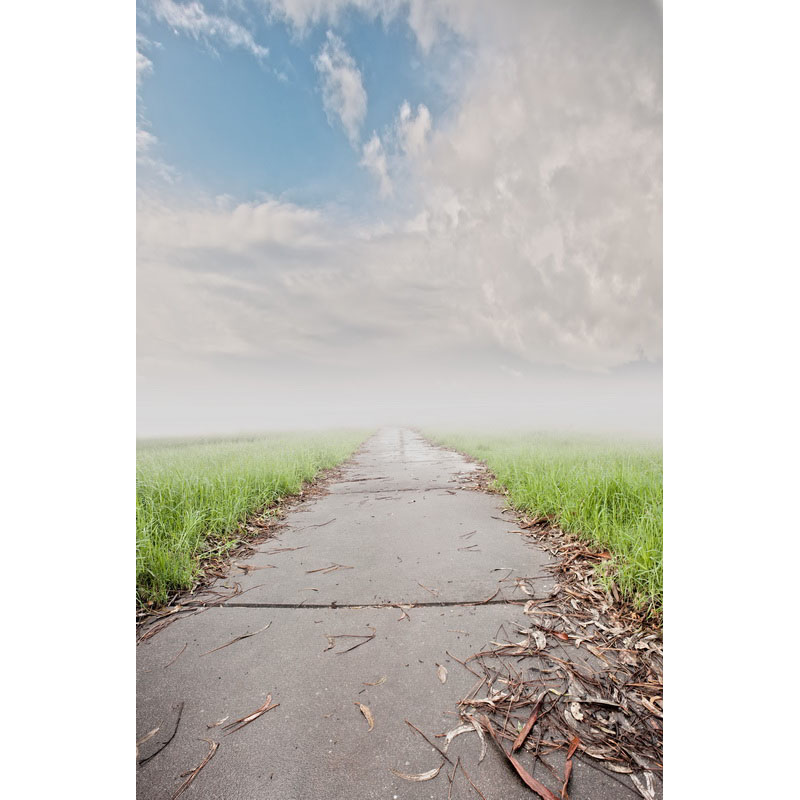 Seamless Vinyl Photography Backdrop Path on the Wild Computer Printed Scenic Nature Backgrounds for Photo Studio F-3158 photo vinyl backdrop top promotion studio photography backgrounds 6 5ftx10ft 2x3m computer paint foldable free shipping