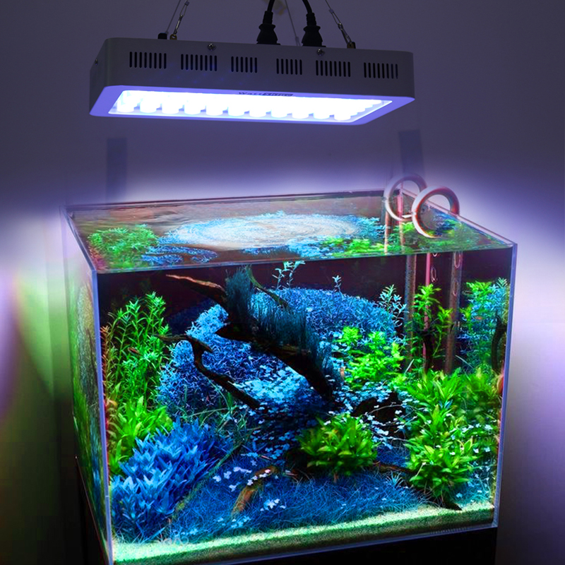 Top quality Led aquarium light for coral DIY 165w aquarium led chip best for fish tank for coral and reef growing Russia Brazil-in LED Grow Lights from ... & Top quality Led aquarium light for coral DIY 165w aquarium led chip ...
