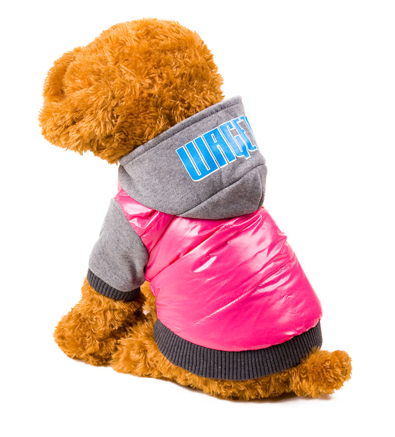 13 dog winter clothes