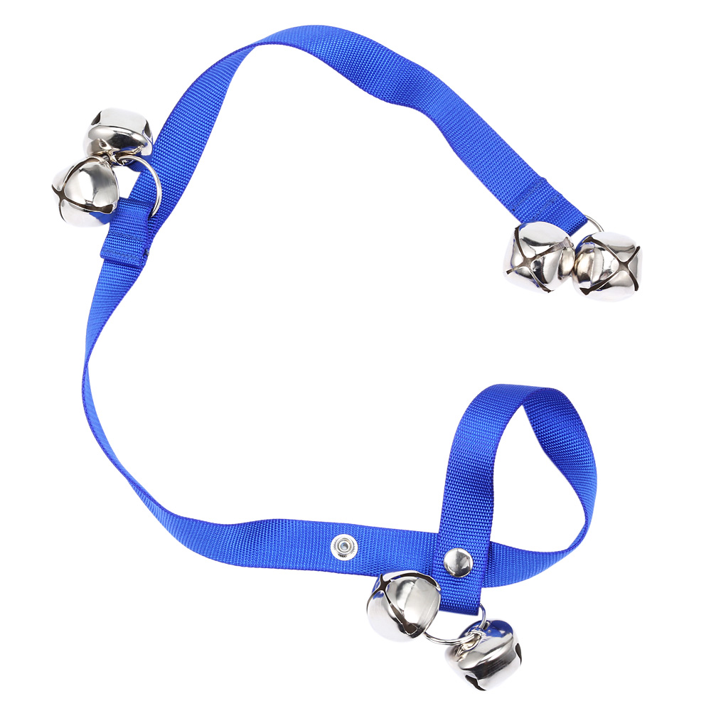 Can You Use A Dog Collar On A Cat