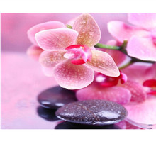 NEW Arrival Diy Square Diamond Painting Orchid Flower Stones Kits Diamond Embroidery Plant Full Rhinestone Flower Cross Stitch
