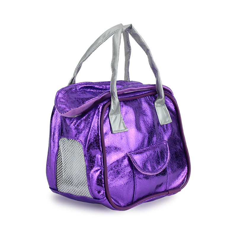 Purple Shine  Bag Fits For 18