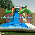 customized inflatable swimming pool slides for sale