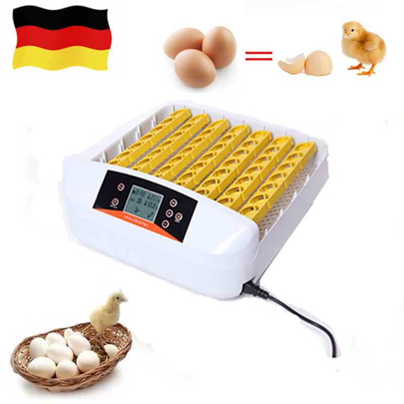 Best Farm Use Hatchery Machine 56 Eggs Auto  Hatchers   Automatic Egg  Incubator China  for Sale Birds Quail Brooder top sale household farm egg incubators 24 egg incubators for led display turner for sale