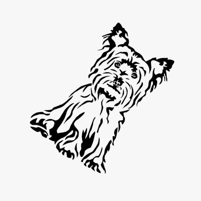 Car Top Paw Dog Harness