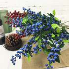Blueberry Long branc...