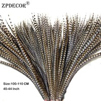 100 110 cm 40 44 Inch Lady Amherst Tail pheasant Feathers Use Arts and Crafts