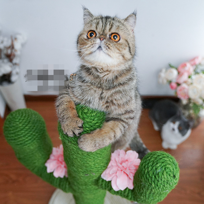 [mpk Store] 10 Meter Sisal Rope Of 5mm Diameter, For Cat Tree, Cat Toy