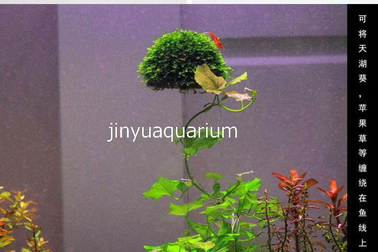 Water potted moss suspended ball plant grow landscape ada for Growing plants in water with fish