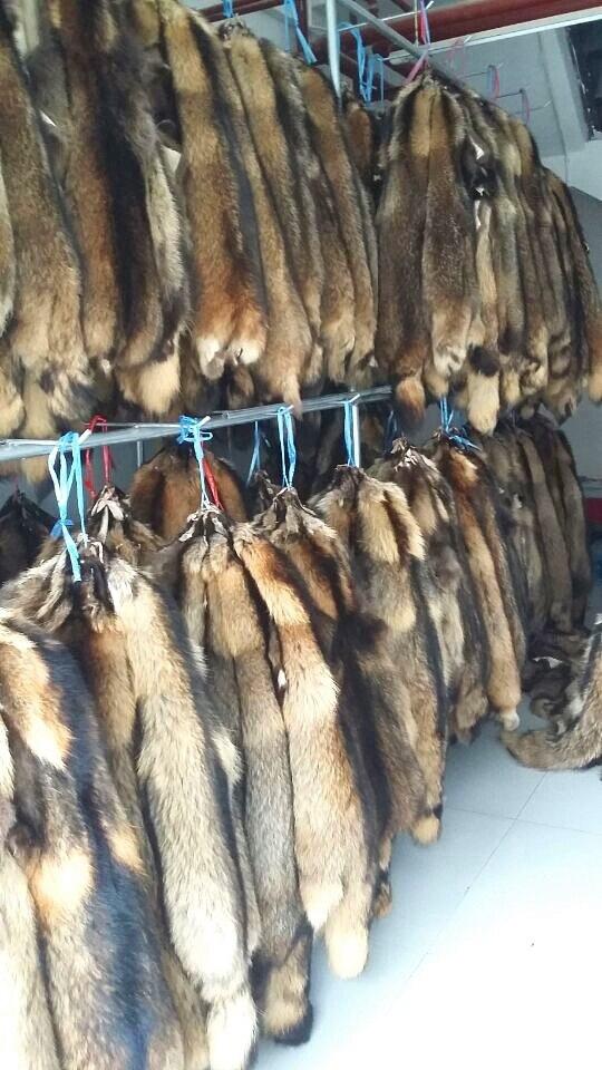 2016 nouvelle chine usine de fourrure de raton laveur en gros vraie peau de fourrure