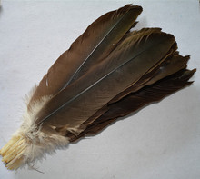 New! 10 pc high-quality eagle bird feathers  DIY jewelry decoration