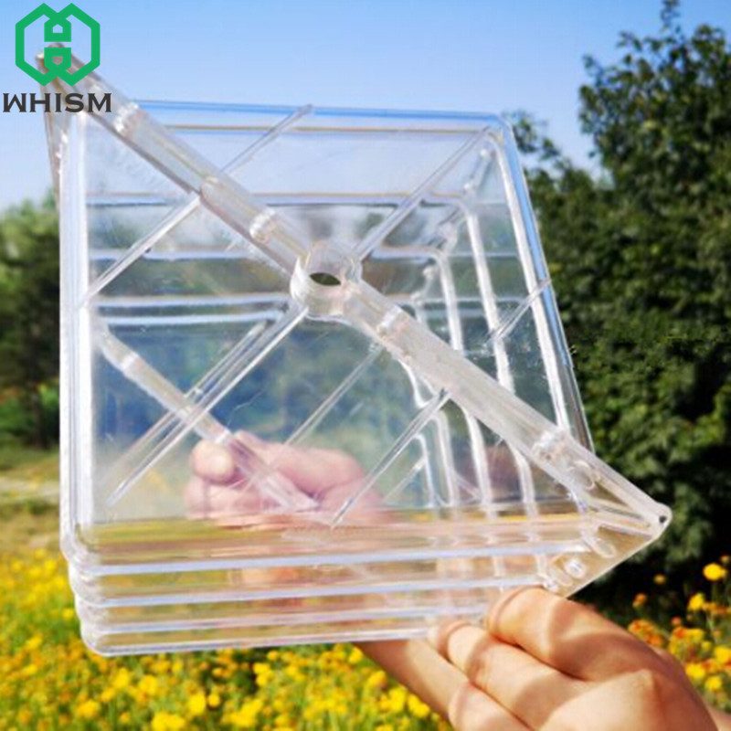 US $17 75 26% OFF|WHISM Large Size Plastic Heart Square Watermelon Growing  Molds Transparent Fruit Growth Forming Shaping Mould Garden Supplies-in