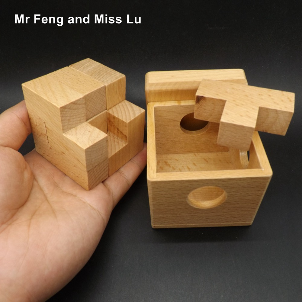 Fancy Wooden Box Puzzle Game Toy Intelligence Iq Brain