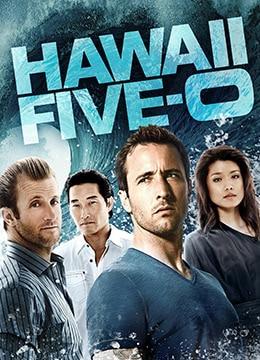 夏威夷特勤组 第三季