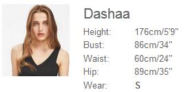 Dashaa-S