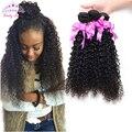 Cabelo brasileiro Virgem Com Fechamento 4 Bundles kinky curly brasileiro virgem cabelo com encerramento não transformados cabelo humano com fecho