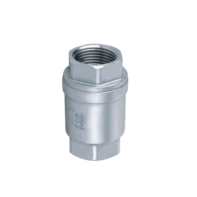 Stainless Steel (304) In Line Spring Check Valve DN15(1/2