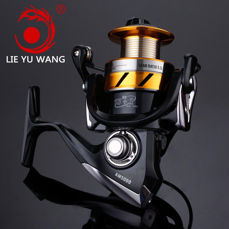 LIEYUWANG Brand AM Fishing Reel Metal Main Body Spinning reel 14 BB Spinning Reel Saltwater Carp Reel Rod Combo Fishing Rod