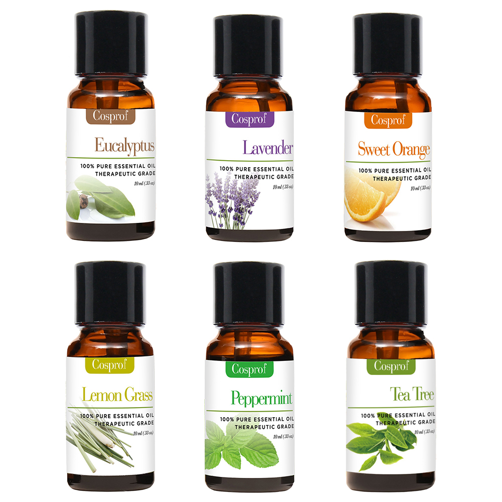 100 PURE NATURAL ESSENTIAL OILS 6 in 1 Gift Kit Certified 10ML FREE SHIPPING in Massage Relaxation from Beauty Health