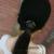 Boné de beisebol de strass applique cap equestre de lã anel de metal moda feminina chapéu