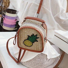 INS Mini Beach Bag Zipper Woven Straw Backpacks for Women 2019 Boho Pineapple Pattern Travel Shoulder Embroidery Bag