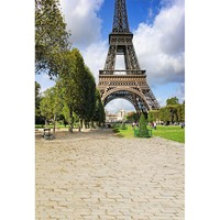 Custom Vinyl Cloth Blue Sky Eiffel Tower Photography Backdrops For Wedding Kids Studio Portrait Backgrounds Photocall