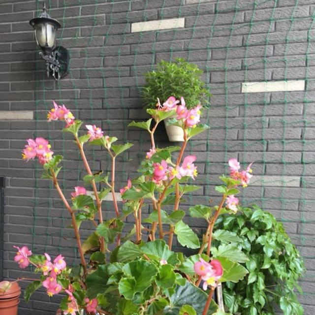 1.8*1.8m  Nylon Net Climbing Frame Gardening Net Plant Fence Bird-Preventing Anti-Bird Devices Anti-Bird Mesh
