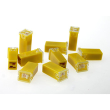 10 Pcs car DC 32V  60A PAL fuse 2 Terminal Plug In Type Cartridge Fuse
