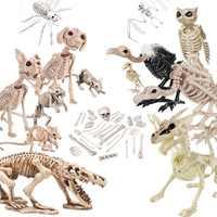 Halloween Decoration Bone Props Animals Skeleton Ornaments Bat/Spider/Dragon/Bird Bones Hallowmas Horror House Party Decoration