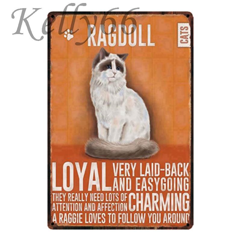 [Kelly66] Ragdoll GATO Sinal Da Lata do Metal Poster Home Decor Bar Arte Da Parede Pintura 20*30 CM Tamanho y-1796