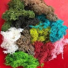 45 g/grup dekoratif Sphagnum yosunlar kuru doğal taze yosun, gerçek ebedi kurutulmuş çim, DIY dekoratif korunmuş çiçek aksesuarları