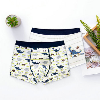 Set of 2 Panties For A Baby Boy/Kid Baby Clothes Kid (3+ years) Panties Shop by Age Toddler (1-3 years)