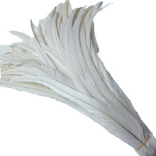 50Pcs/Lot White Rooster Tail Feather 35-40cm/14-16inch Natural Feathers for Crafts For Jewelry Making Wedding Decoration