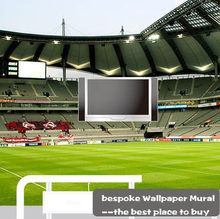 3D Photo Wallpaper Large 3D Background Wall Sports Football Field Mural TV  Background Wall Wallpaper Mural Part 48