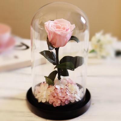Kreative Glas Rosen Blumen Frisch Erhaltenen Rose Blume Hochzeit