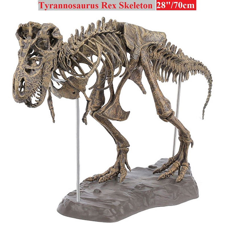 Large Dinosaur Fossil Skull Animal Model Toy Tyrannosaurus Rex Assemble Skeleton Model Furnishing Articles Decoration Kit NSV775