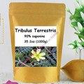 1000gram Tribulus Terrestris Extract 90% Saponins Powder free shipping