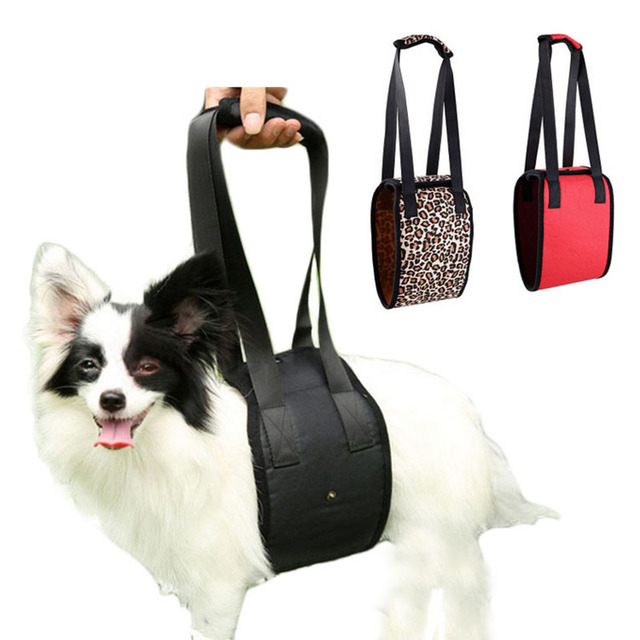 chien ascenseur soutien harnais aide ceinture pour handicap s d 39 ge chiens pet dog training avec. Black Bedroom Furniture Sets. Home Design Ideas