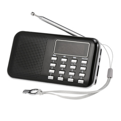 Y-896 Mini FM Radio Digital Portable 3W Stereo Speaker MP3 Player Radio w/ 2