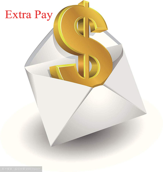 Extra Payment Extra Cost Fast Shipping Cost or Other Special Request image