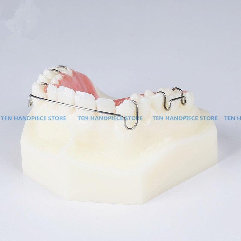 2018 bonne qualité 1 pièces modèle d'appareil orthodontique dentaire avec des orthèses de retenue de formateur de dents enseignement et Science