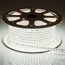 Laimaik светодиодная лента 5050 Водонепроницаемый IP67 AC 220 В светодиодные ленты 60leds/M 5050SMD лента светодиодная свет с Мощность разъем светодиодные фонари