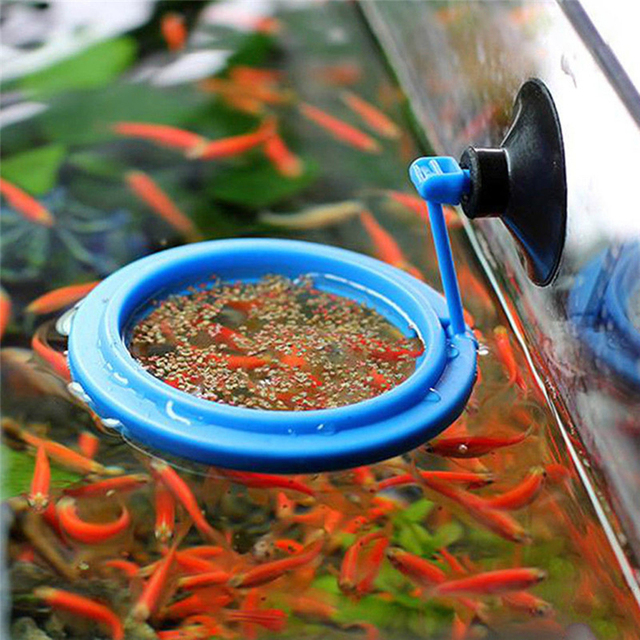 Aquarium Feeding Ring and Floating Food Tray Feeder  2