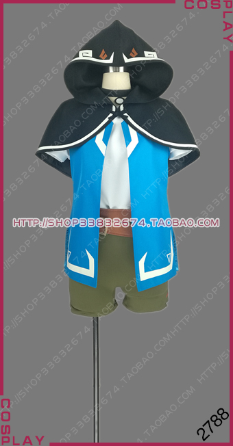 The Legend of Zelda: Breath of the Wild Hero of Hyrule Link Outfit Clothes Cosplay Costume S002