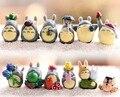 12 Шт./компл. Японский Боевик Finger Игрушки Миядзаки Хаяо Симпатичные Тоторо Модель Коллекция Кукла Для Детей Образование Обучение